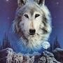 adolphwolf