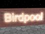 birdpool