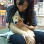 Pipi☆寵物筆記
