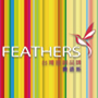 feathers費德斯