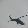 flypanda15