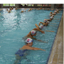 go2swim