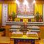 Holy Dharma