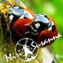 MiriSusanna 圖像