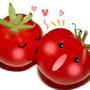 蕃茄日本代購