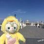 Rabbit Gloria