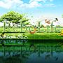 Rebolife