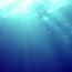 serena海