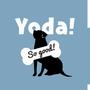 Yoda!So Good!
