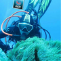 台南游龍潛水
